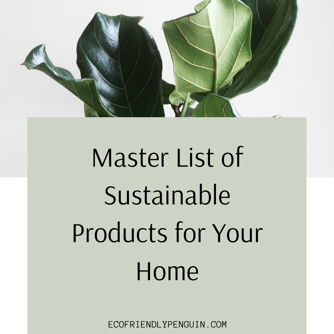 Master List of Sustainable Products for Your Home