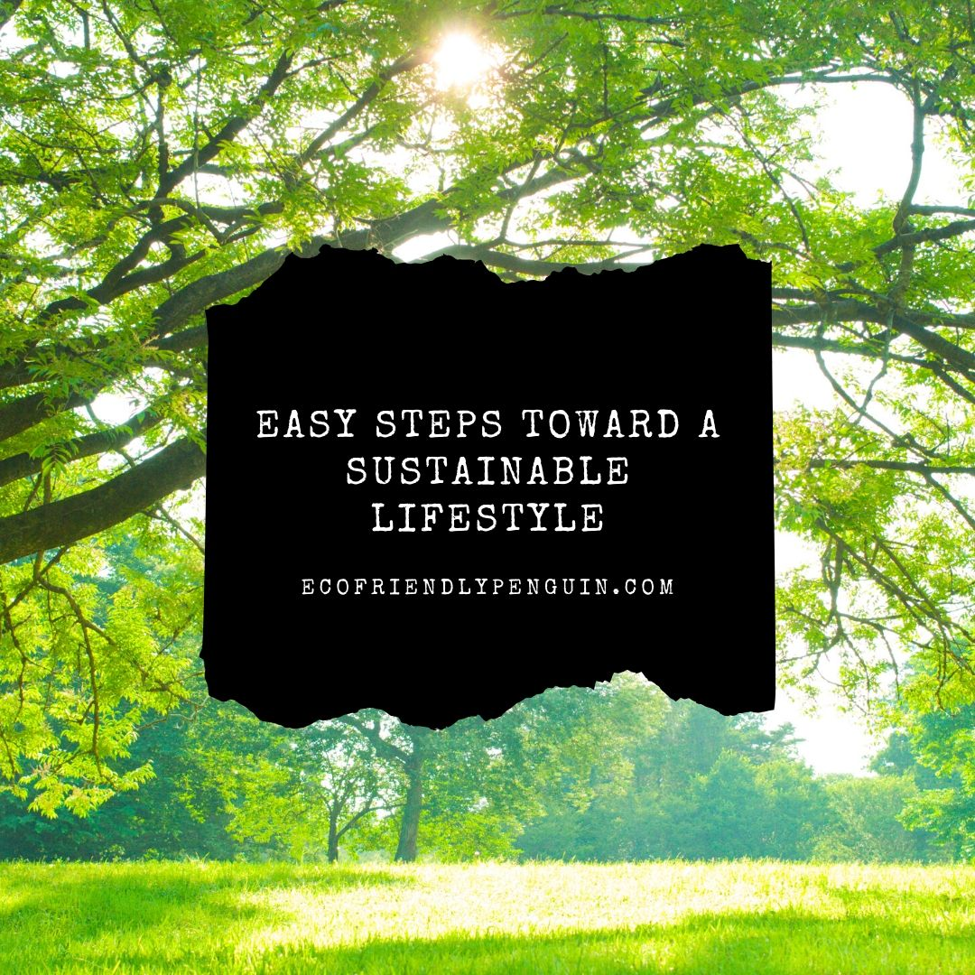 Small Tips Towards a Sustainable Lifestyle