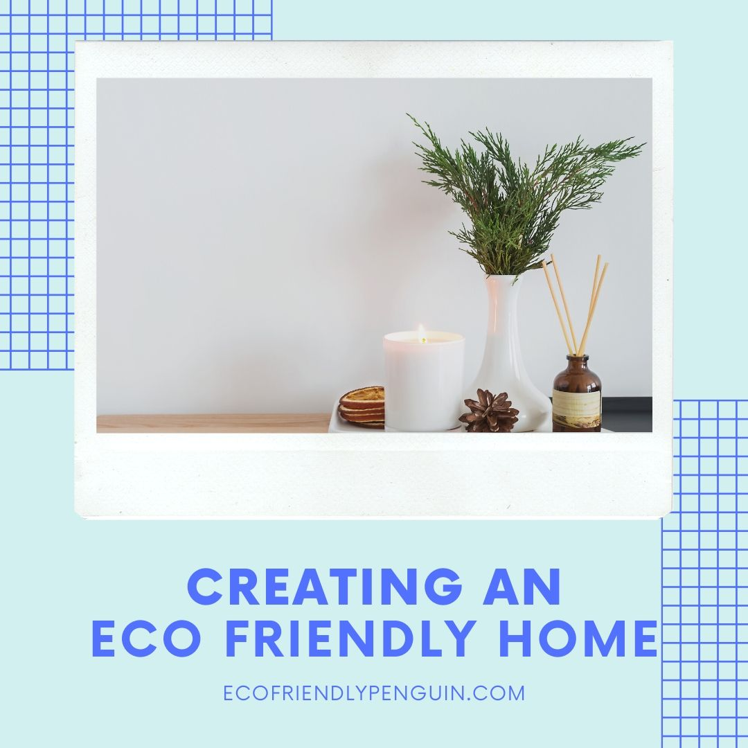 Creating a More Eco Friendly Home