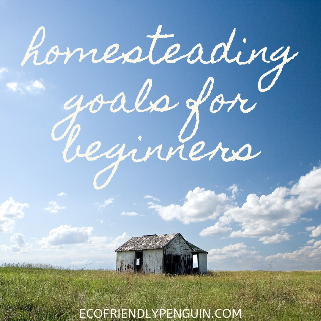 Homesteading Farm Goals for Beginners