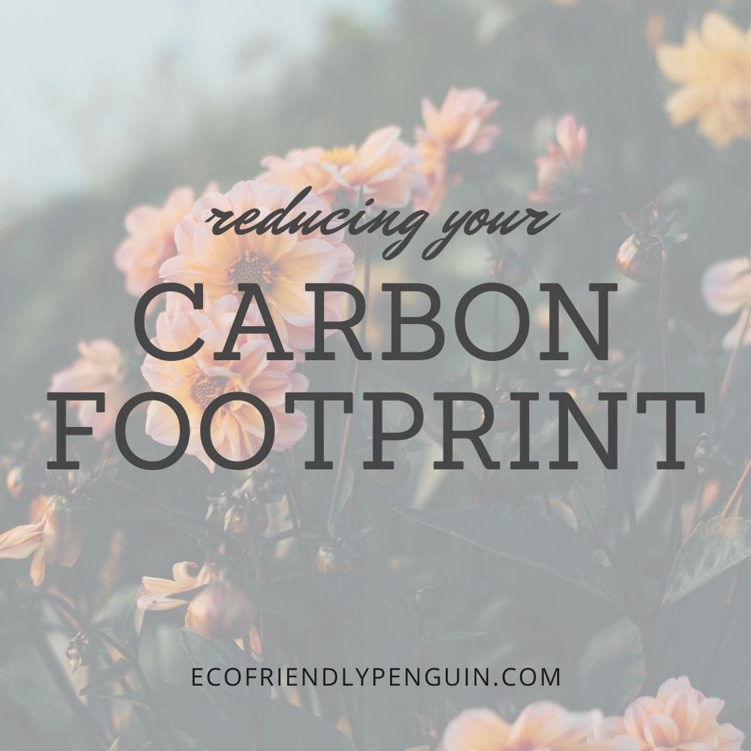 Reduce Your Carbon Footprint Right Now!
